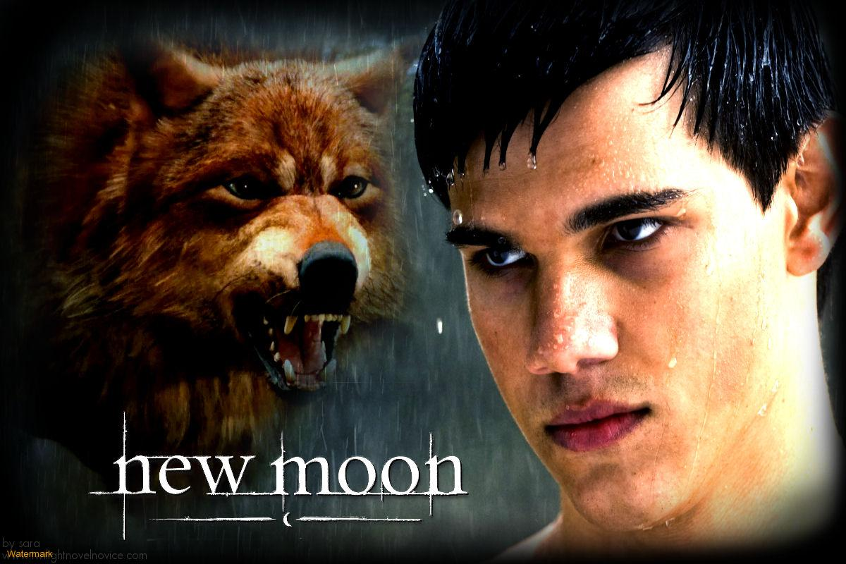 twilight jacob black wolf - photo #22